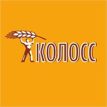 TOO Torgovyy dom «KOLOSS»